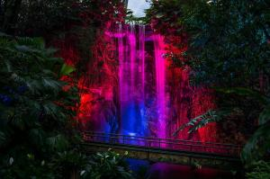Architectuur - Lichtshow Burgers Zoo